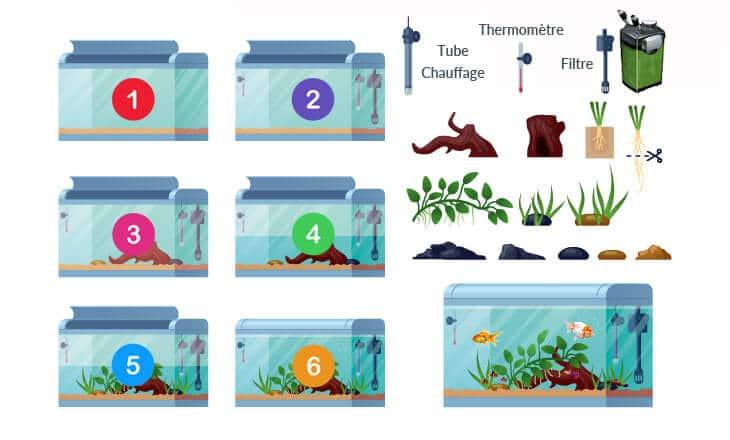 installer un aquarium : infographique