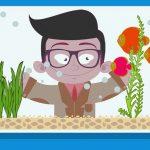 Poissons Rouges: 10 erreurs communes à éviter