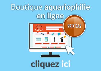 Poisson rouge tout sur les poissons rouges aquariophilie for Boutique aquariophilie