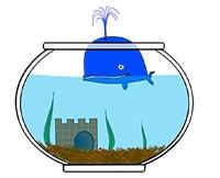 Dessin d'humour représentant une baleine dans un bocal